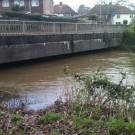 Bridge in Salisbury